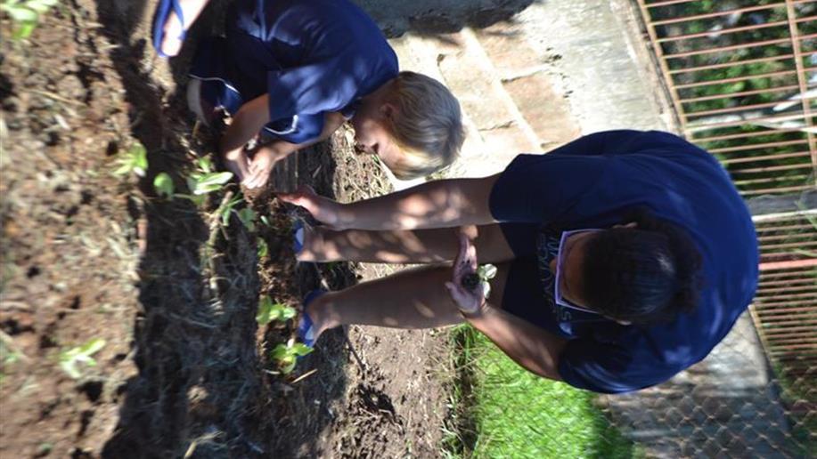 Familiares ajudaram a preparar o terreno dentro da Escola